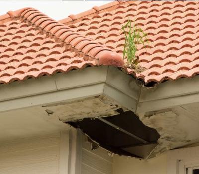 roof-leakage-proseal-1