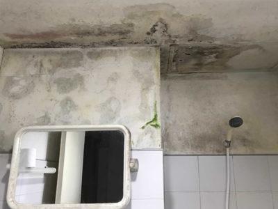 Roof-Leakage-Repair-1