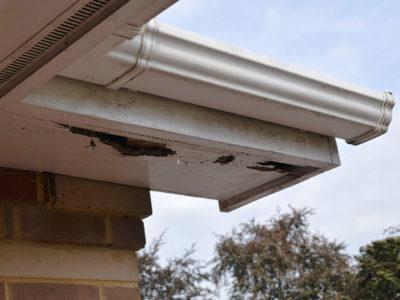 Roof-Leakage-Repair-3