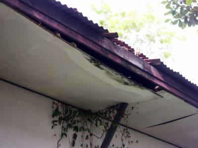 Roof-Leakage-Repair-4