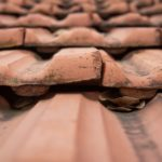 What To Do If Your Roof Is Leaking?